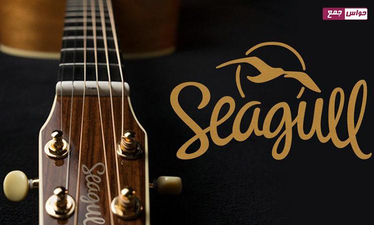 گیتار سیگول | Seagull
